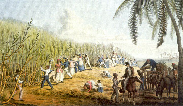 the history of the caribbean exploitation of labour We can see this history of exploitative sugar cane growers in fl obtained permission to hire caribbean workers to timeline of agricultural labor in.
